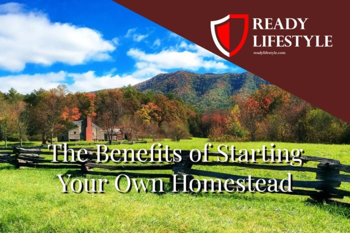 Benefits of Starting a Homestead