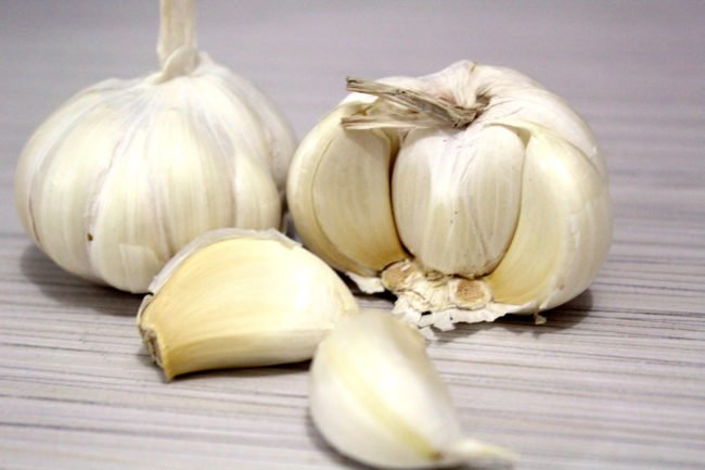Garlic is a medicinal herb that has antimicrobial benefits.