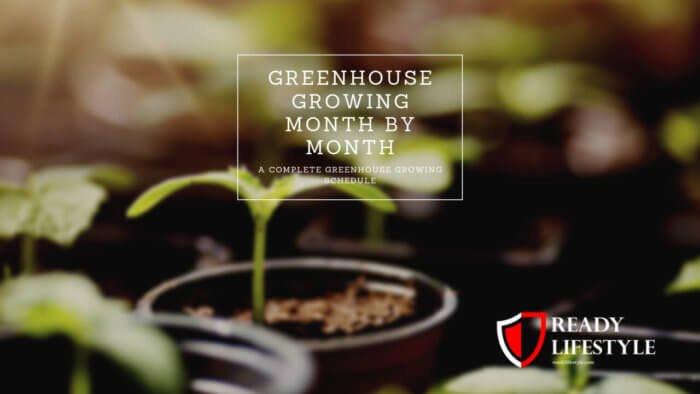Greenhouse Growing Month by Month