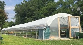 Complete Greenhouse Growing Schedule