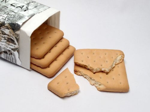 Hardtack - A Simple Recipe for One of the Best Survival Foods
