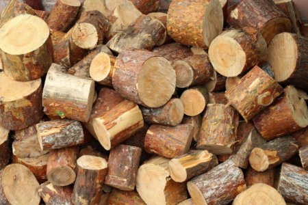 Hardwood for Activated Charcoal