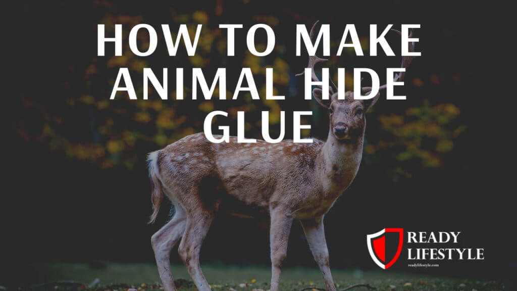 How to Make Animal Glue - What You Need to Know