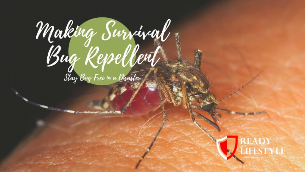 Making Survival Bug Repellent