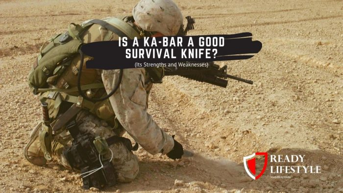 Should You Use a Ka-Bar as a Survival Knife