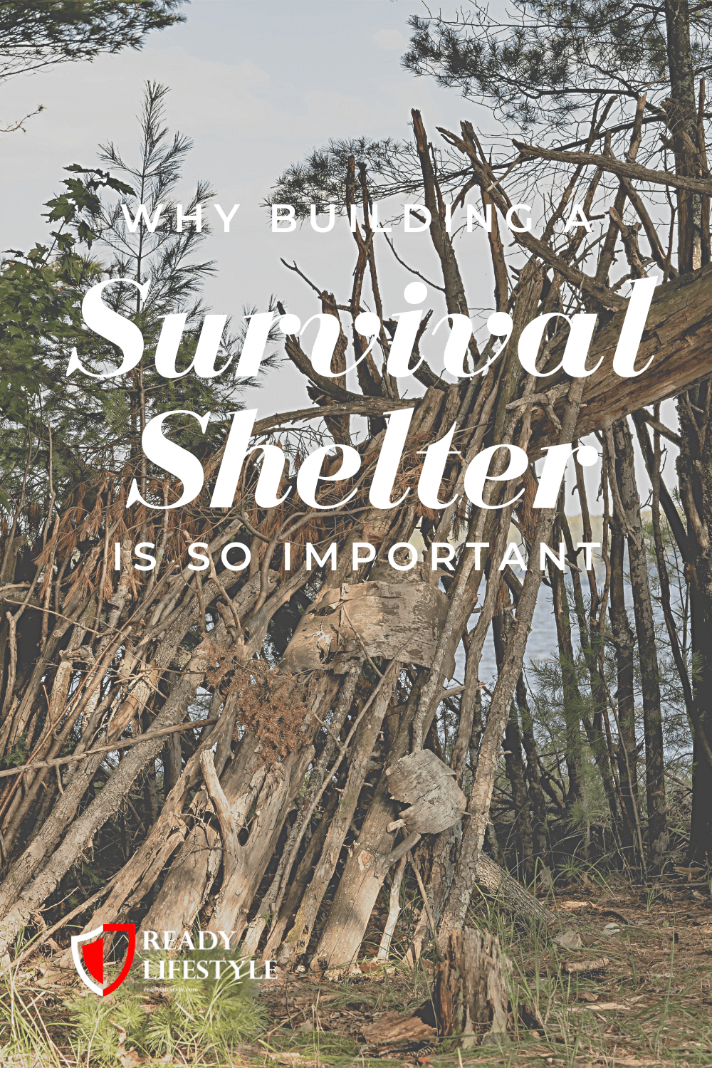 Survival Shelter (1)