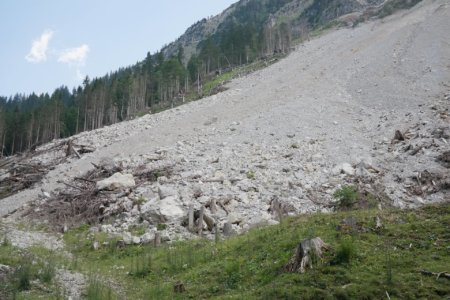 Survival Skills for Landslides: What to Do and How to Prepare