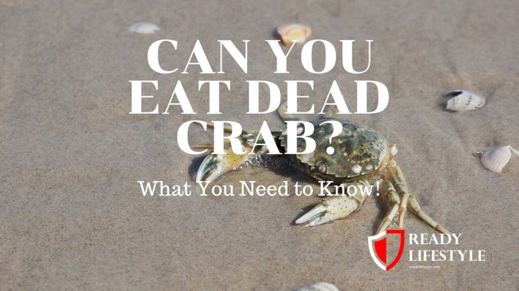 Can You Eat Dead Crab? What You Need to Know!