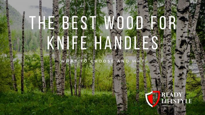 Best Wood for Knife Handles