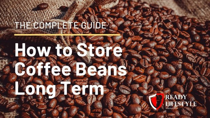 How to Store Coffee Beans Long Term